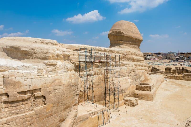 著名埃及狮身人面象在从后部的吉萨棉 库存照片