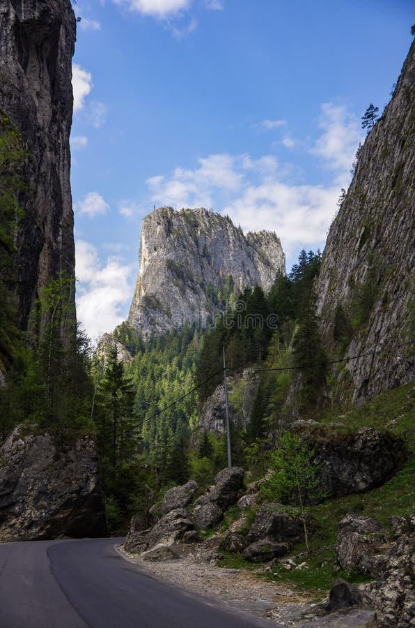 著名比卡兹峡谷峡谷的夏天风景在Neamt县 免版税图库摄影