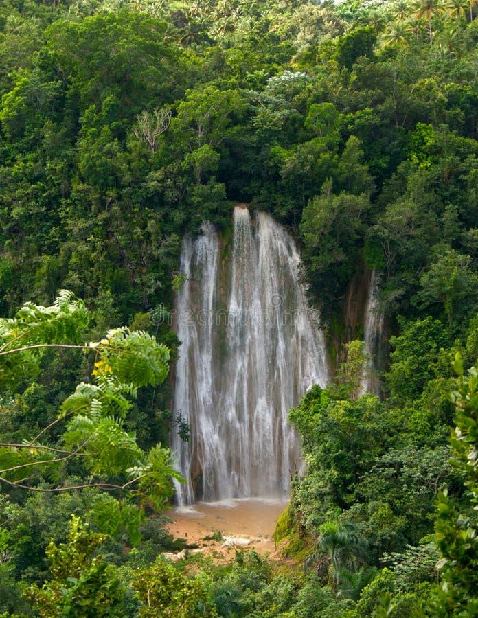 著名瀑布在热带雨以后的森林里。 Samana。 免版税库存图片