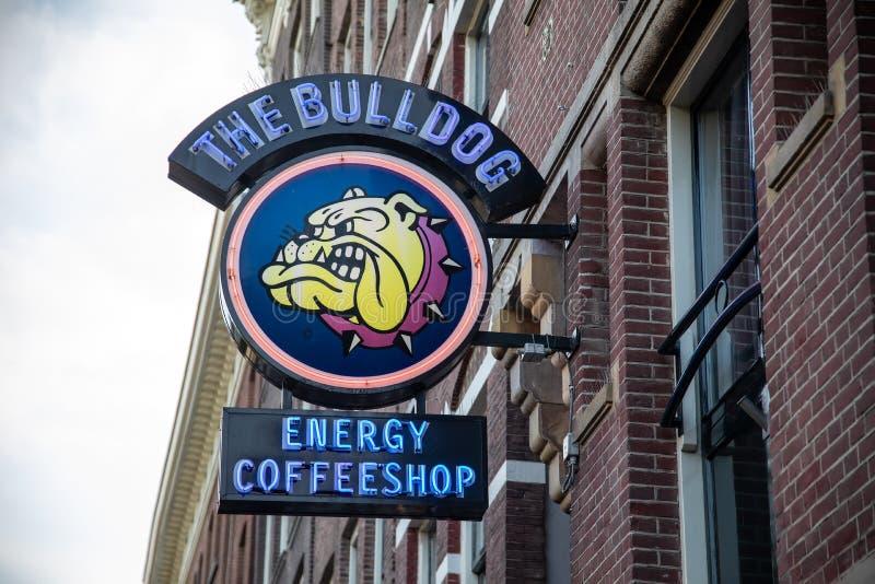 著名coffeshop牛头犬在阿姆斯特丹市,荷兰 图库摄影