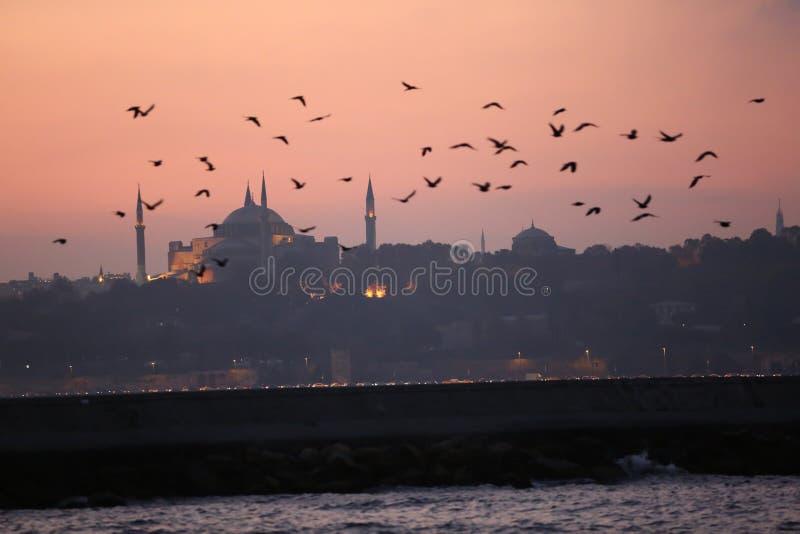 著名hagia伊斯坦布尔sophia 图库摄影