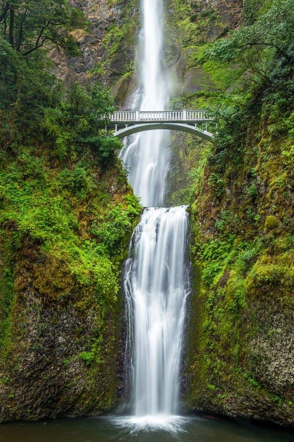 著名Multnomah在哥伦比亚河峡谷,俄勒冈下跌 免版税库存照片