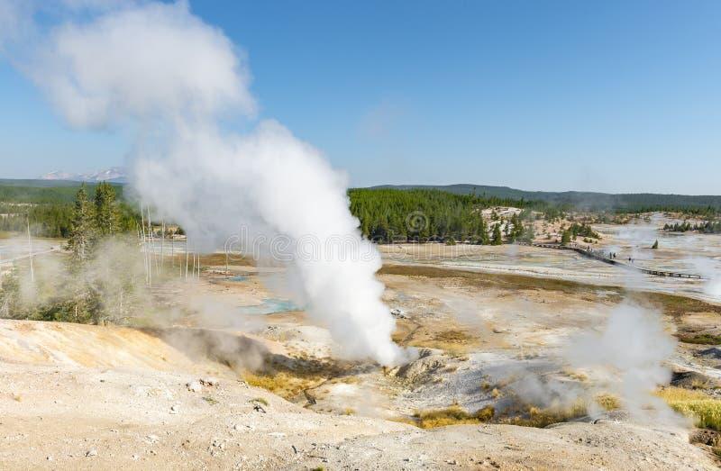 葛若弗斯喷泉水池蒸气足迹,黄石,美国 免版税库存照片