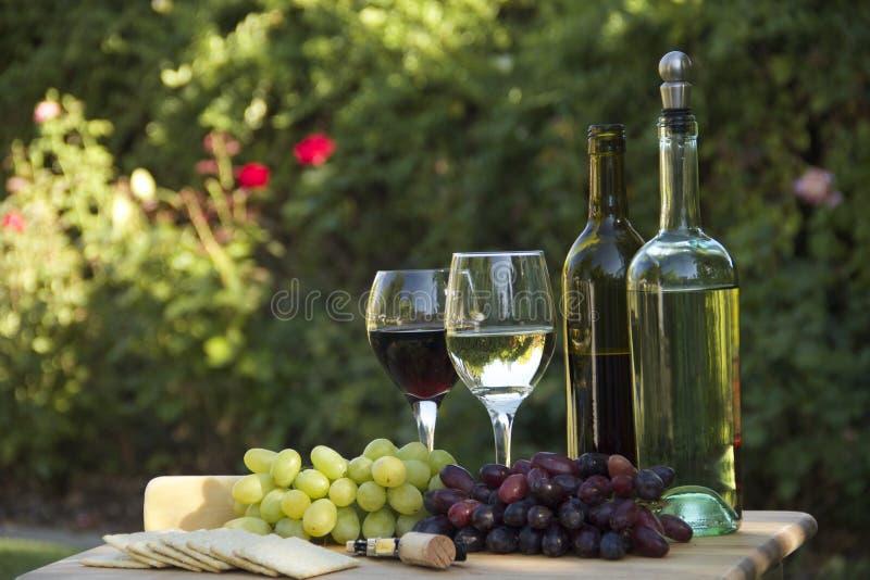 葡萄、酒、乳酪&薄脆饼干 免版税库存照片