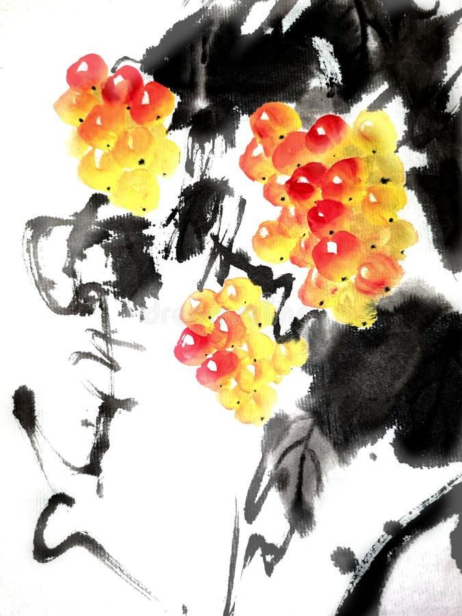 葡萄中国或日本墨水绘画  向量例证