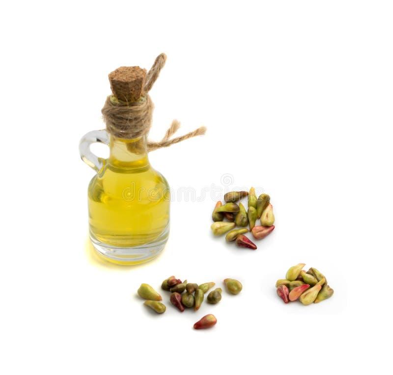 葡萄含油种子 免版税库存图片