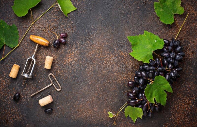 葡萄和葡萄酒拔塞螺旋 库存照片
