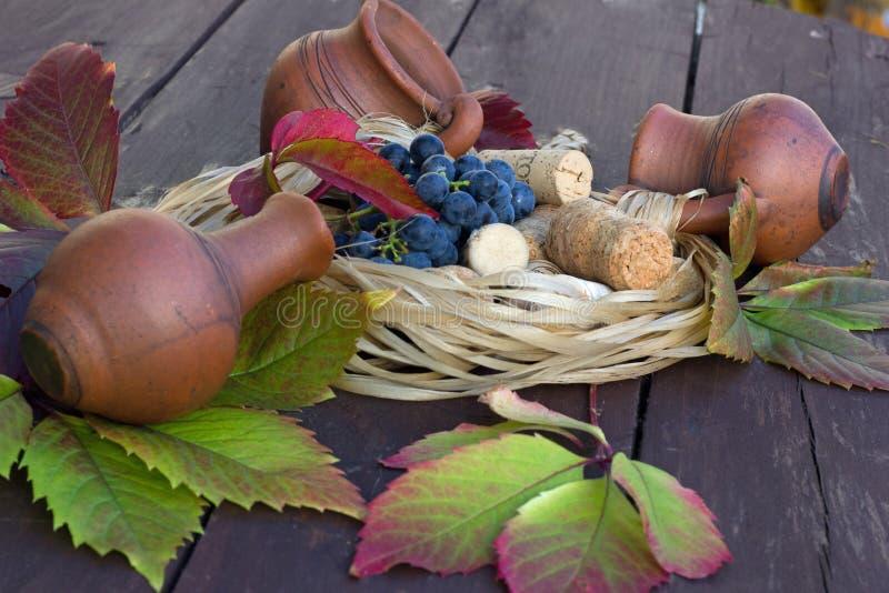 葡萄和黄柏从酒瓶 库存照片