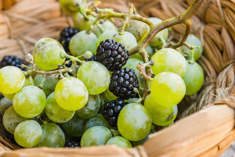 葡萄和黑莓 库存图片
