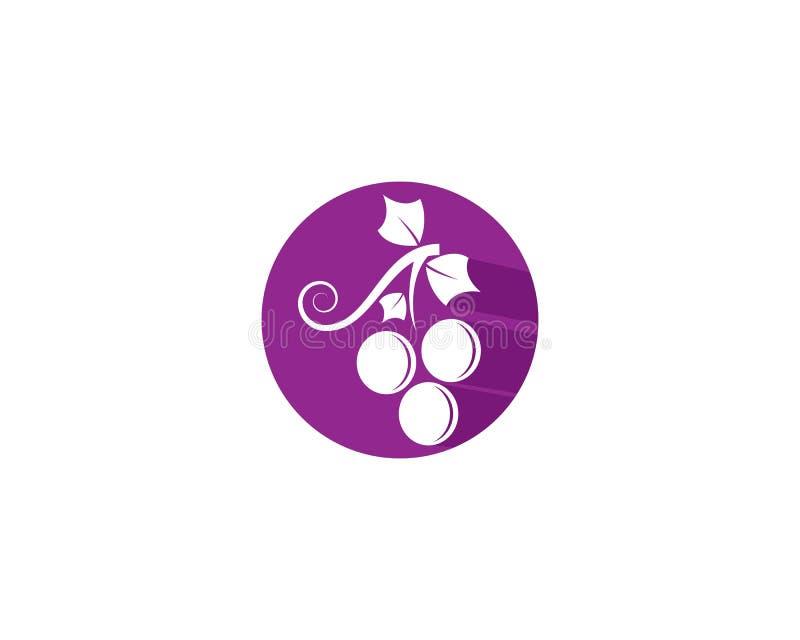 葡萄商标模板传染媒介象 向量例证