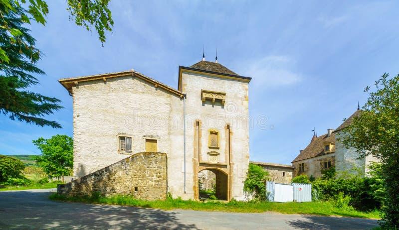 葡萄园和乡下和老大别墅,在博若莱红葡萄酒 库存图片