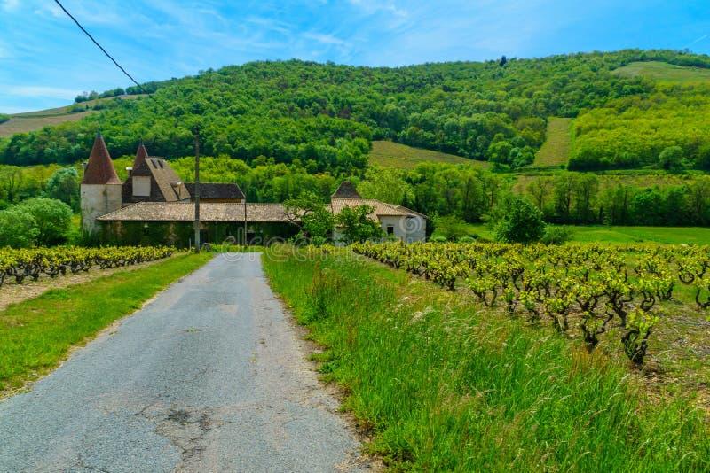 葡萄园和乡下和老大别墅,在博若莱红葡萄酒 免版税库存照片