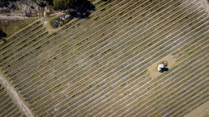 葡萄园和花岗岩鸟瞰图在Stanthorpe,澳大利亚晃动 免版税库存照片