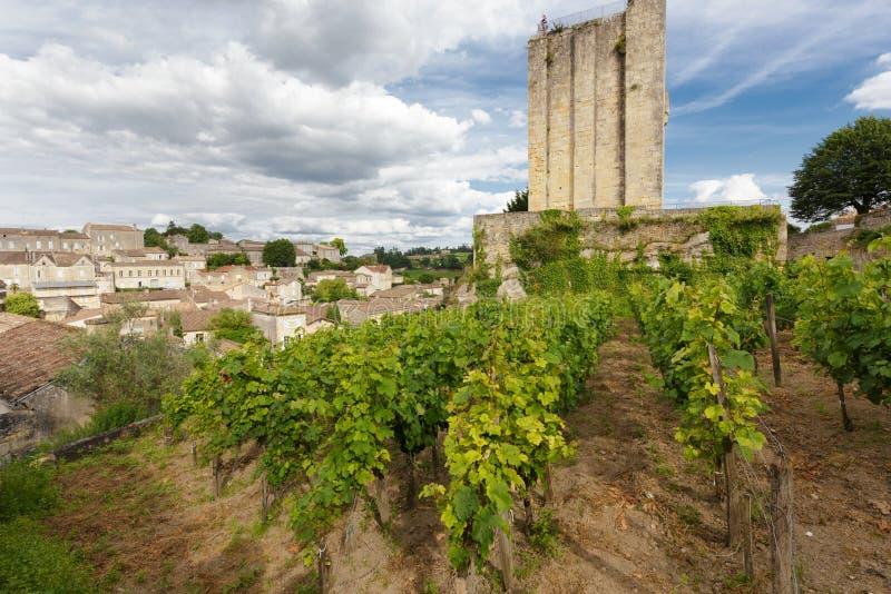 葡萄园在圣Emilion村庄 免版税库存图片