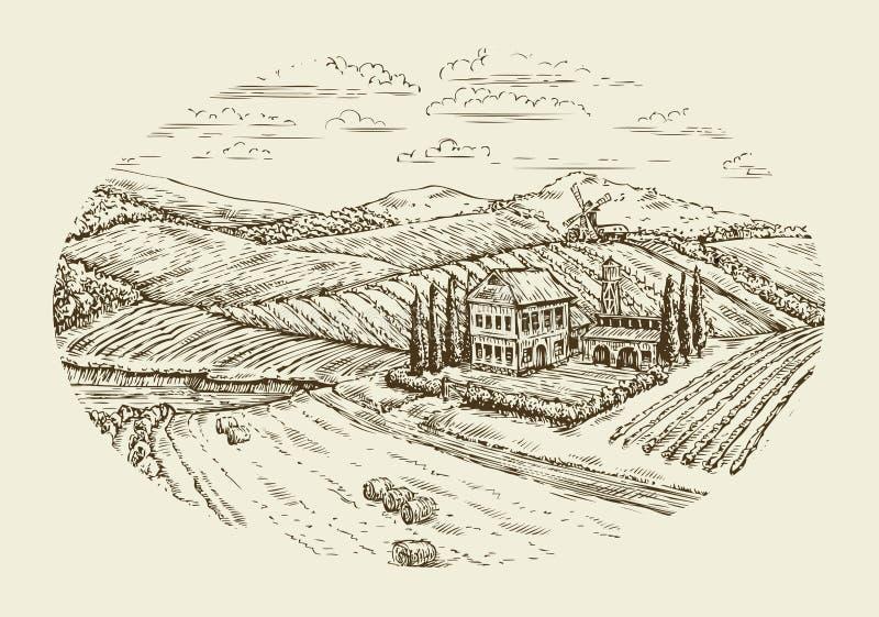 葡萄园横向 手拉的葡萄酒剪影农业,种田,农场 库存例证
