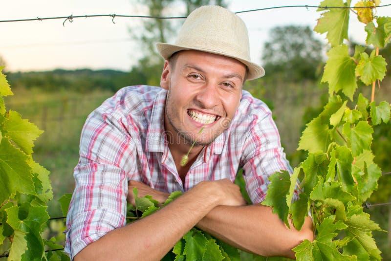 葡萄园的愉快的年轻农夫 库存照片