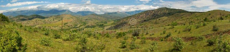 葡萄园美好的夏天全景克里米亚半岛半岛山的  库存图片