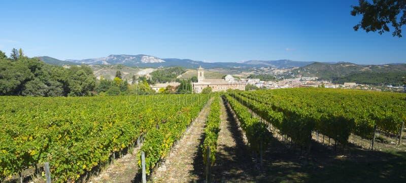 葡萄园,酒, Iratxe修道院 免版税图库摄影
