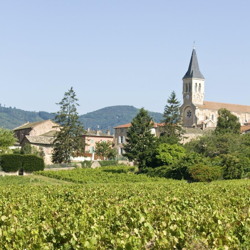 葡萄园, Julienas城镇在博若莱红葡萄酒。 免版税库存照片