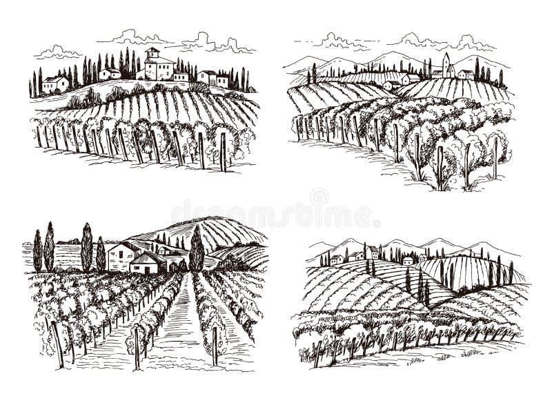 葡萄园 老标签设计项目的法国大别墅酒风景手拉的传染媒介例证 库存例证