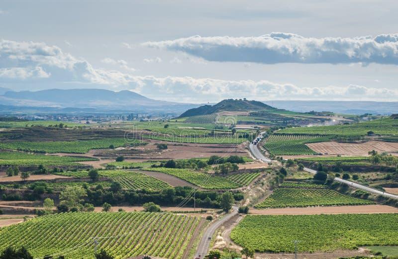 葡萄园skyine在Rioja,西班牙 免版税库存照片