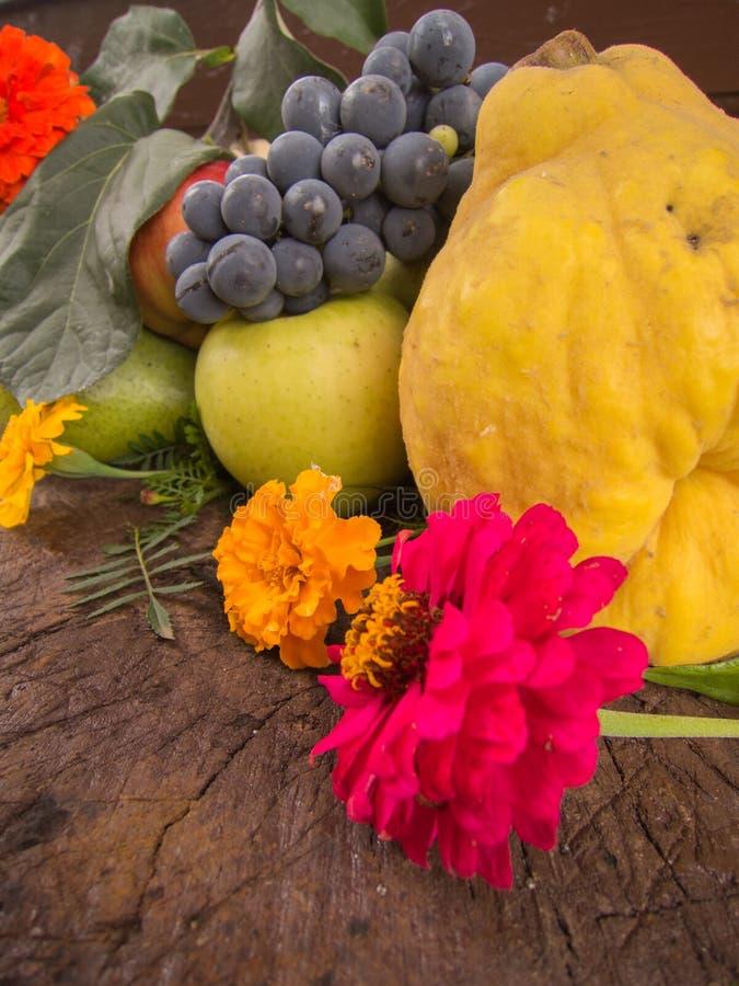 葡萄柑橘梨和苹果收获与秋天开花 免版税图库摄影