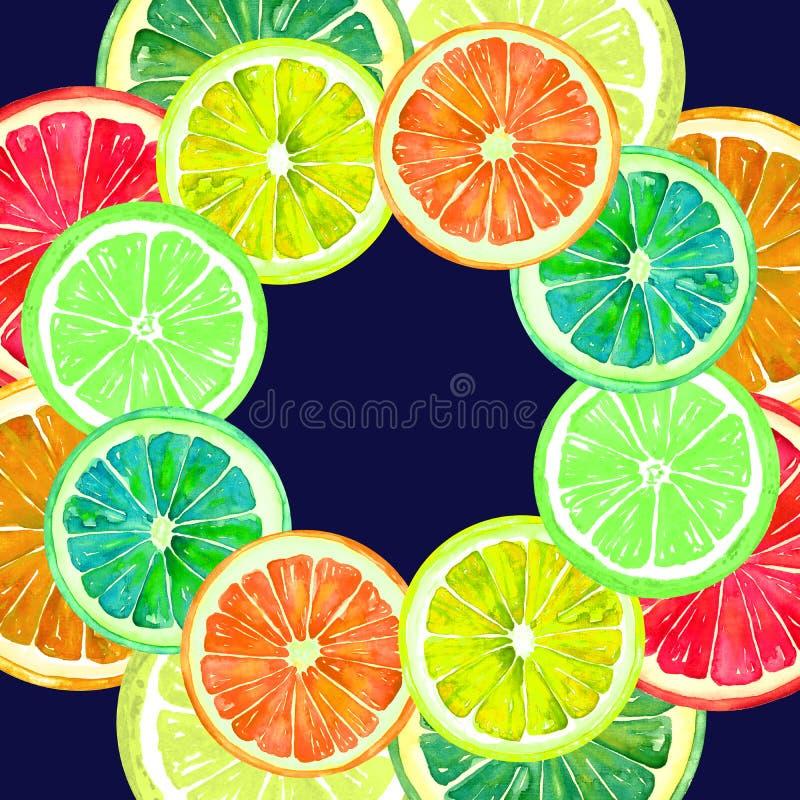 葡萄柚、桔子、石灰和柠檬、双重圆的框架的贺卡或横幅设计 皇族释放例证