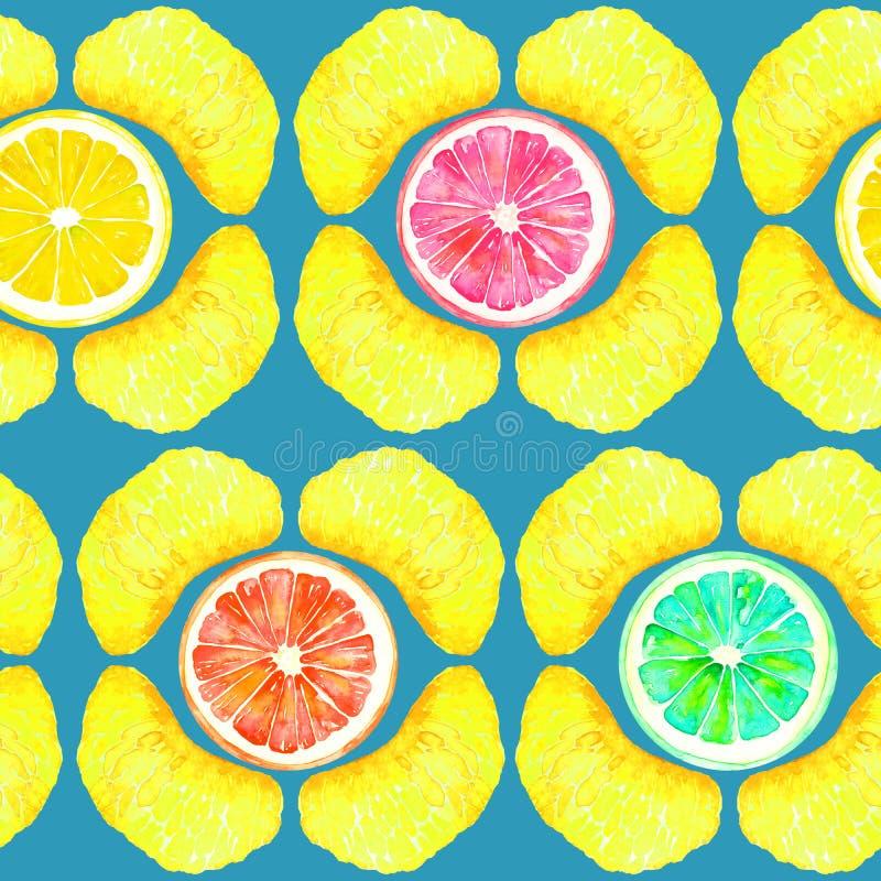葡萄柚、桔子、石灰和柠檬,蜜桔部分,切片以在绿松石背景的几何形式 库存例证