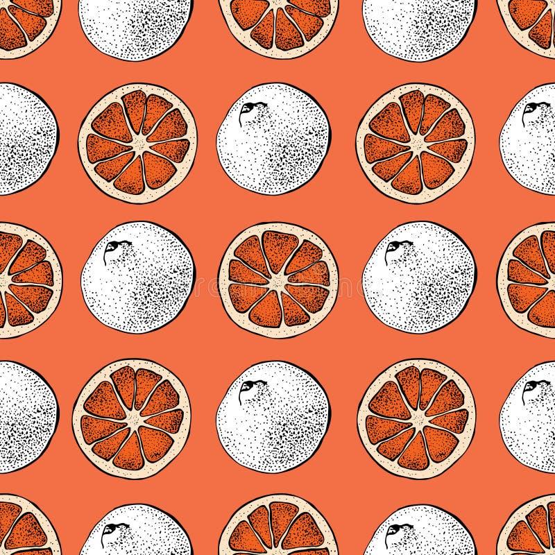 葡萄柚传染媒介无缝的样式 与柚被切的片断的手拉的对象在红色背景的 夏天柑橘 库存例证