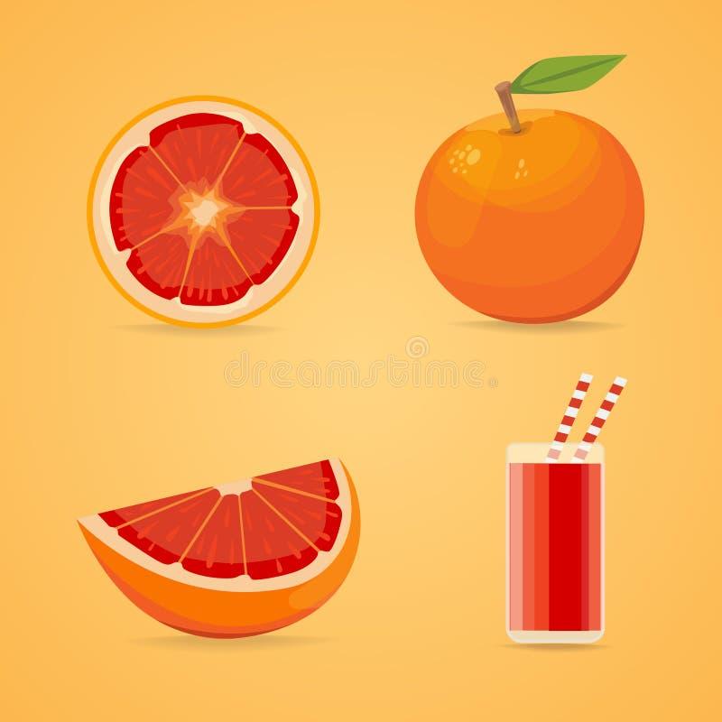 葡萄柚在动画片样式在白色背景隔绝的描述整个和一半的果子海报新鲜的水多的柑橘 向量例证