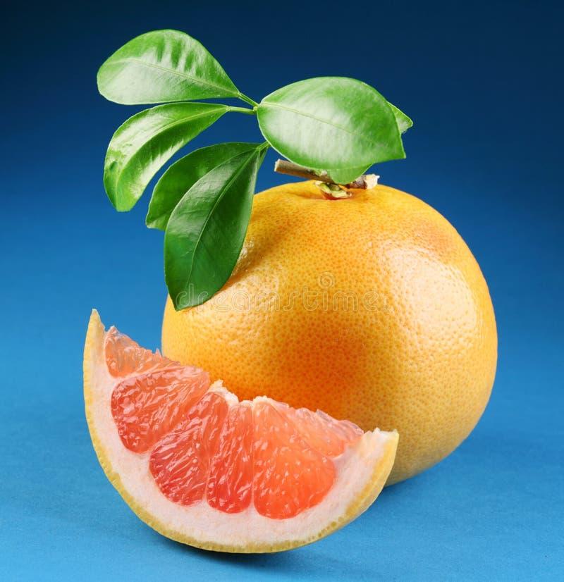 葡萄柚成熟部分 免版税库存照片