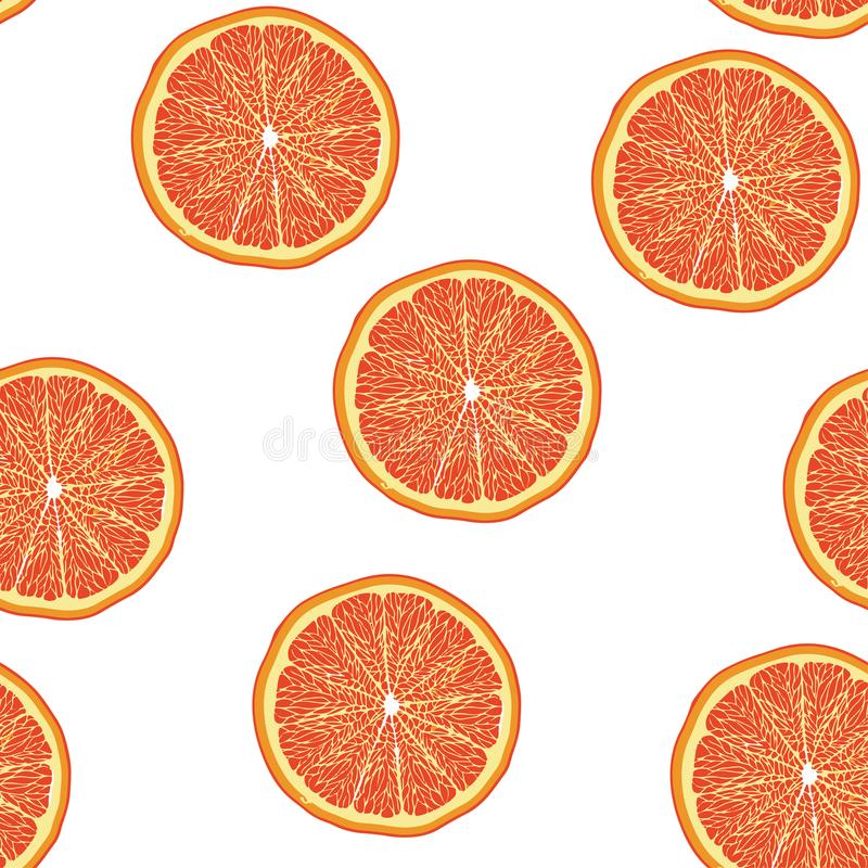 葡萄柚无缝切片的样式 库存例证