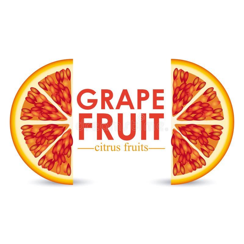 葡萄柚柑桔 皇族释放例证