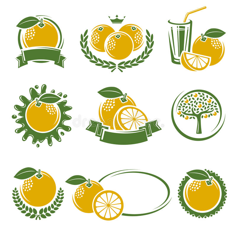 葡萄柚标签和元素集 向量 库存例证