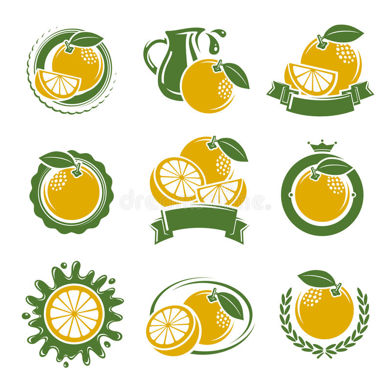 葡萄柚标签和元素集 向量 向量例证