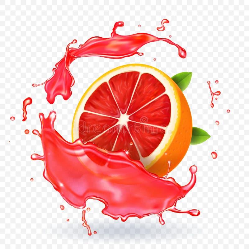 葡萄柚汁飞溅果子新现实象 库存例证