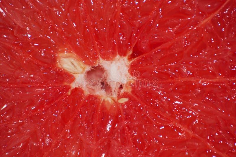 葡萄柚特写镜头宏指令黏浆状物质  与地方的背景文本的 库存图片