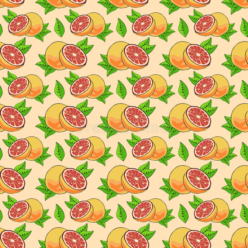 葡萄柚的样式 皇族释放例证