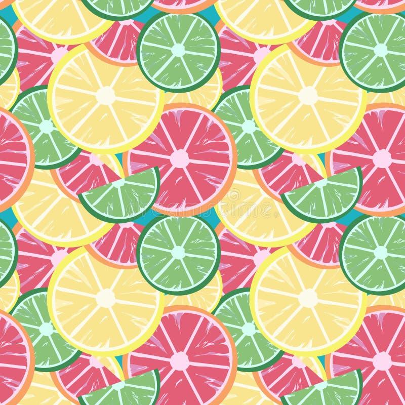 葡萄柚石灰柠檬 库存例证