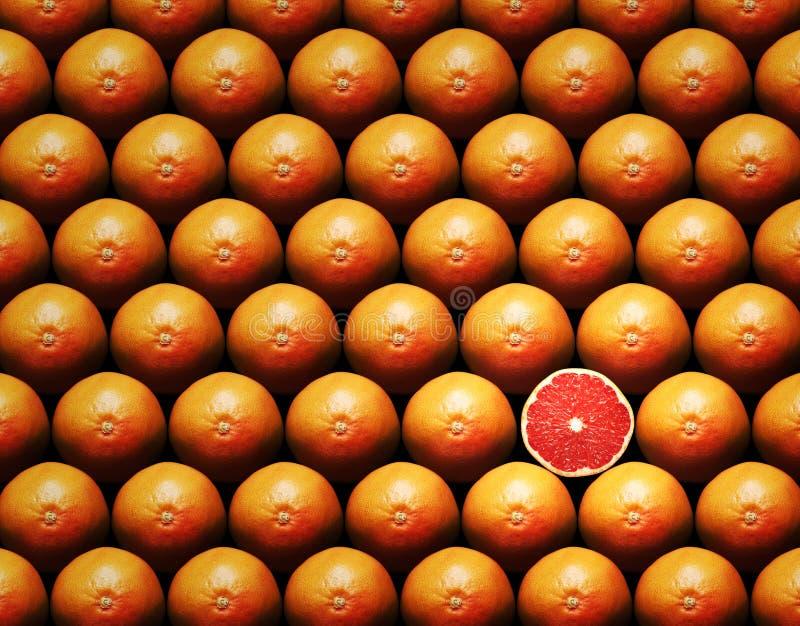 葡萄柚组片式 库存照片