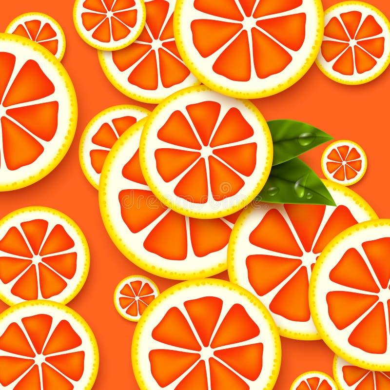 葡萄柚背景 被切的葡萄柚片 向量例证