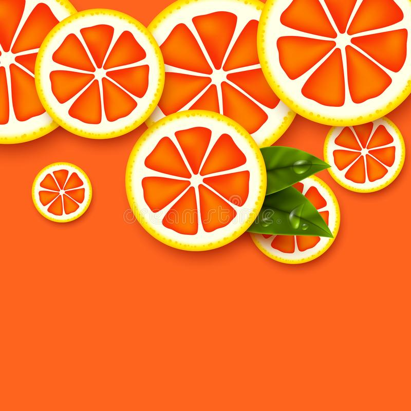葡萄柚背景 被切的葡萄柚片 库存例证