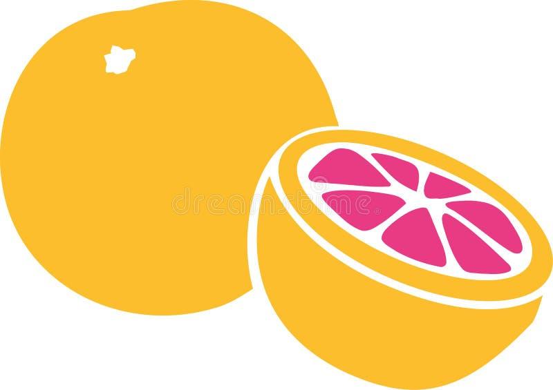 葡萄柚被切的传染媒介 向量例证
