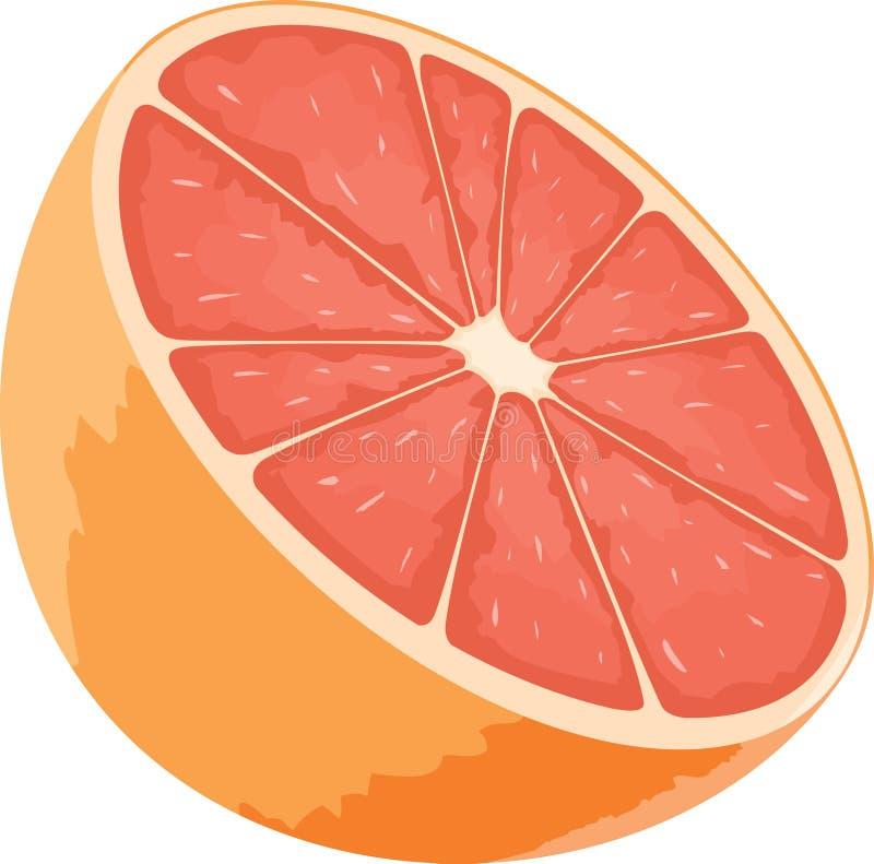 葡萄柚象 向量例证