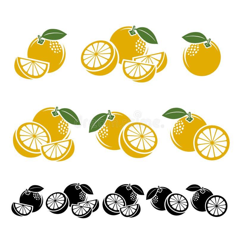 葡萄柚集合 向量 库存例证