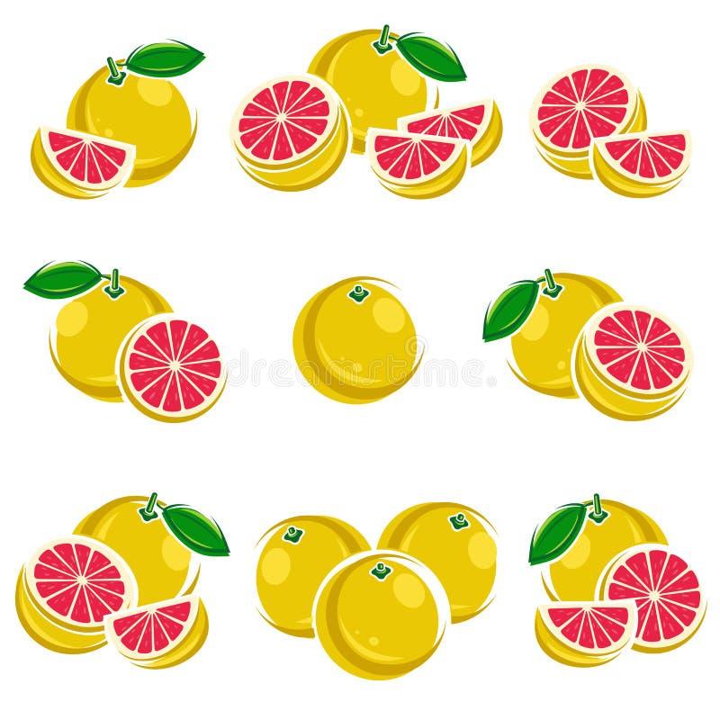 葡萄柚集合 向量 皇族释放例证