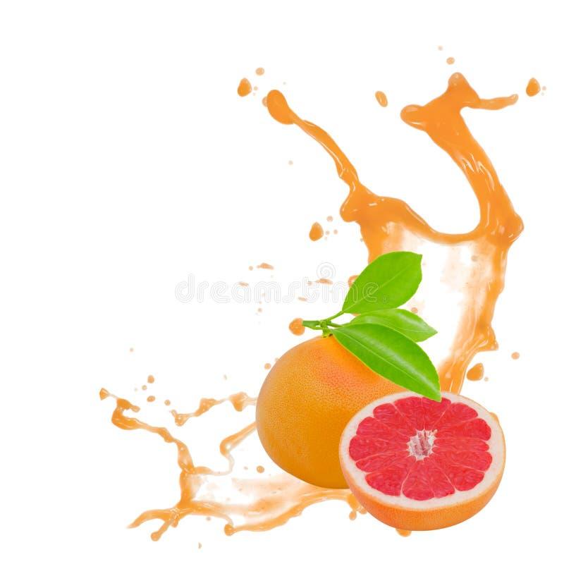 葡萄柚飞溅 图库摄影