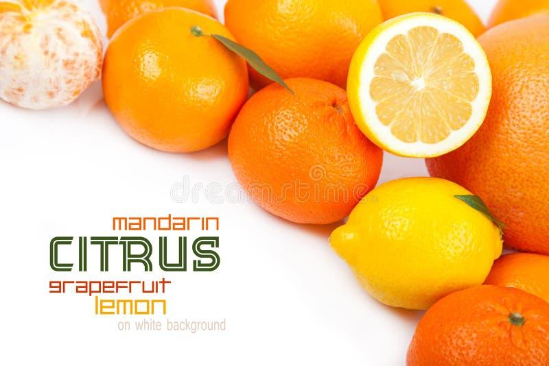 葡萄柚,蜜桔,柠檬,橙色 库存照片