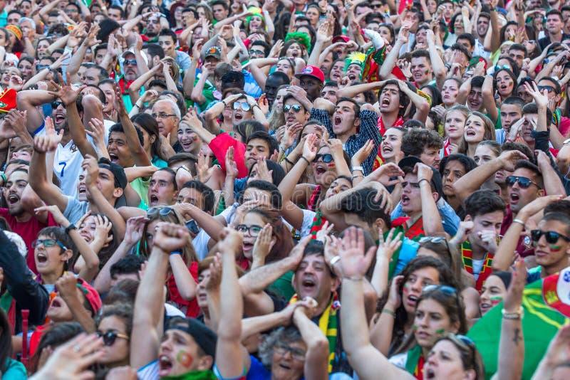 葡萄牙爱好者在足球比赛时葡萄牙的录影翻译 免版税图库摄影