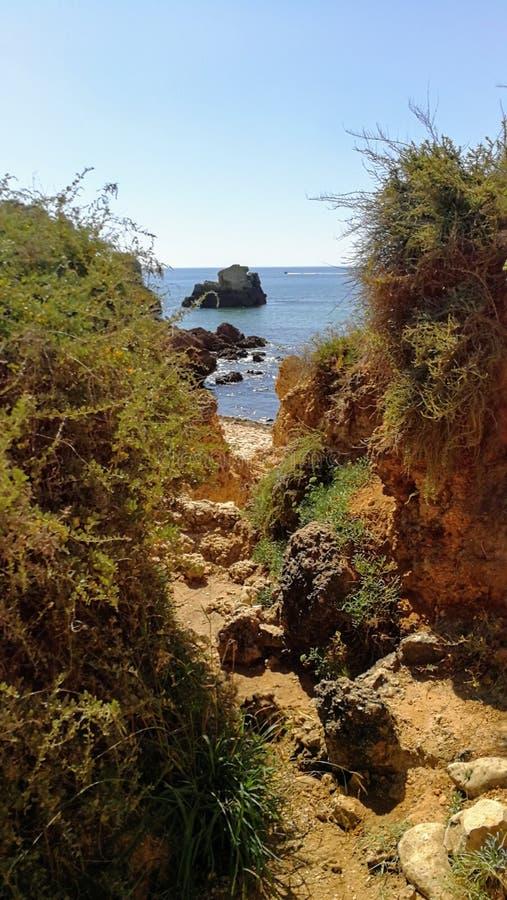 葡萄牙的美妙的本质 库存图片